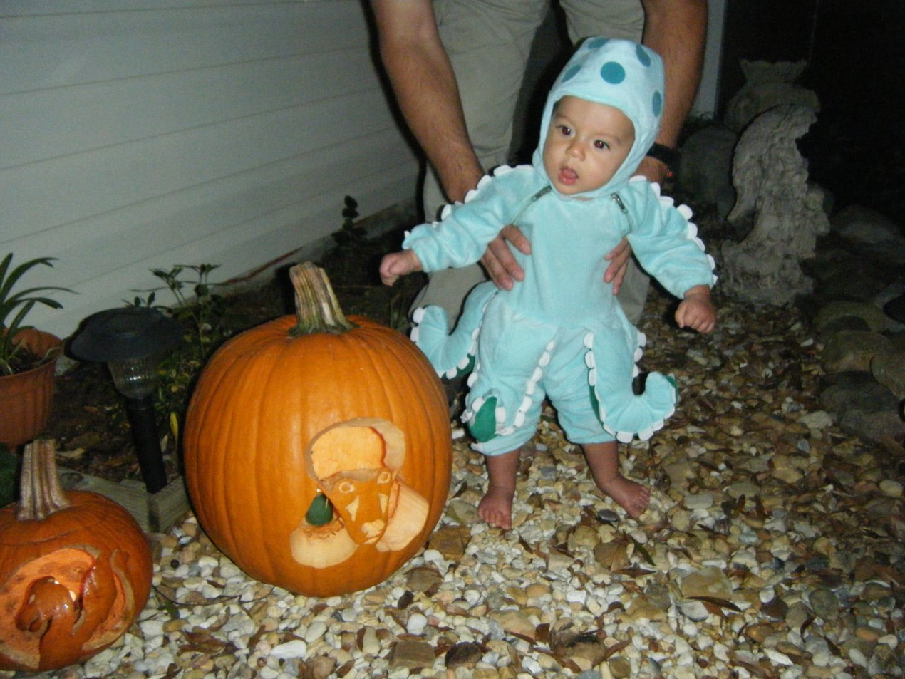 Baby Nicholas' First Halloween and updates-2010_1031firsthalloween0026.jpg