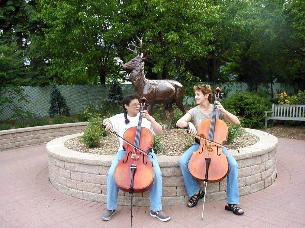 A little inspiration-copy-cello-fun-park-3-.jpg