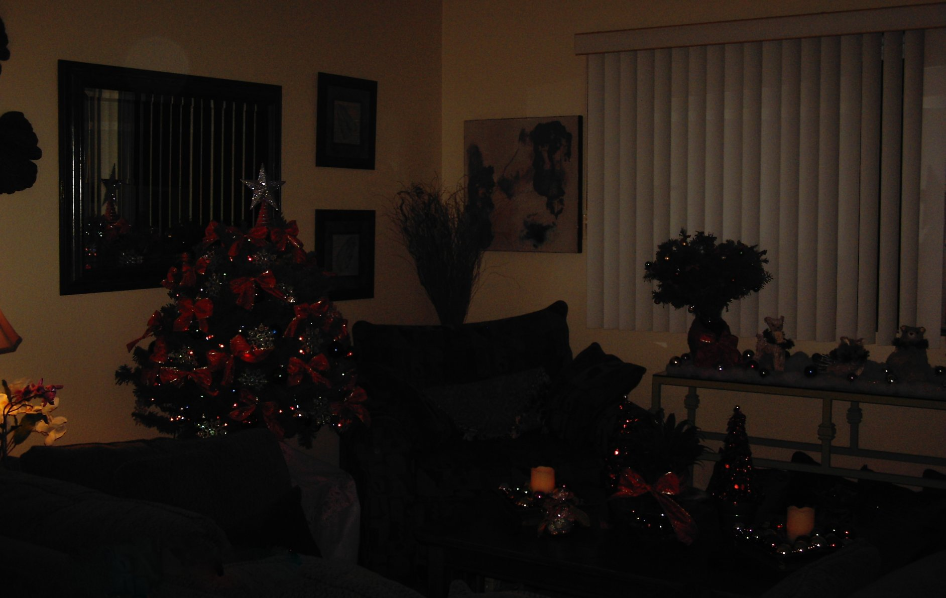 How Much Do Your Dogs Love Christmas Trees?-dcfc0392.jpg