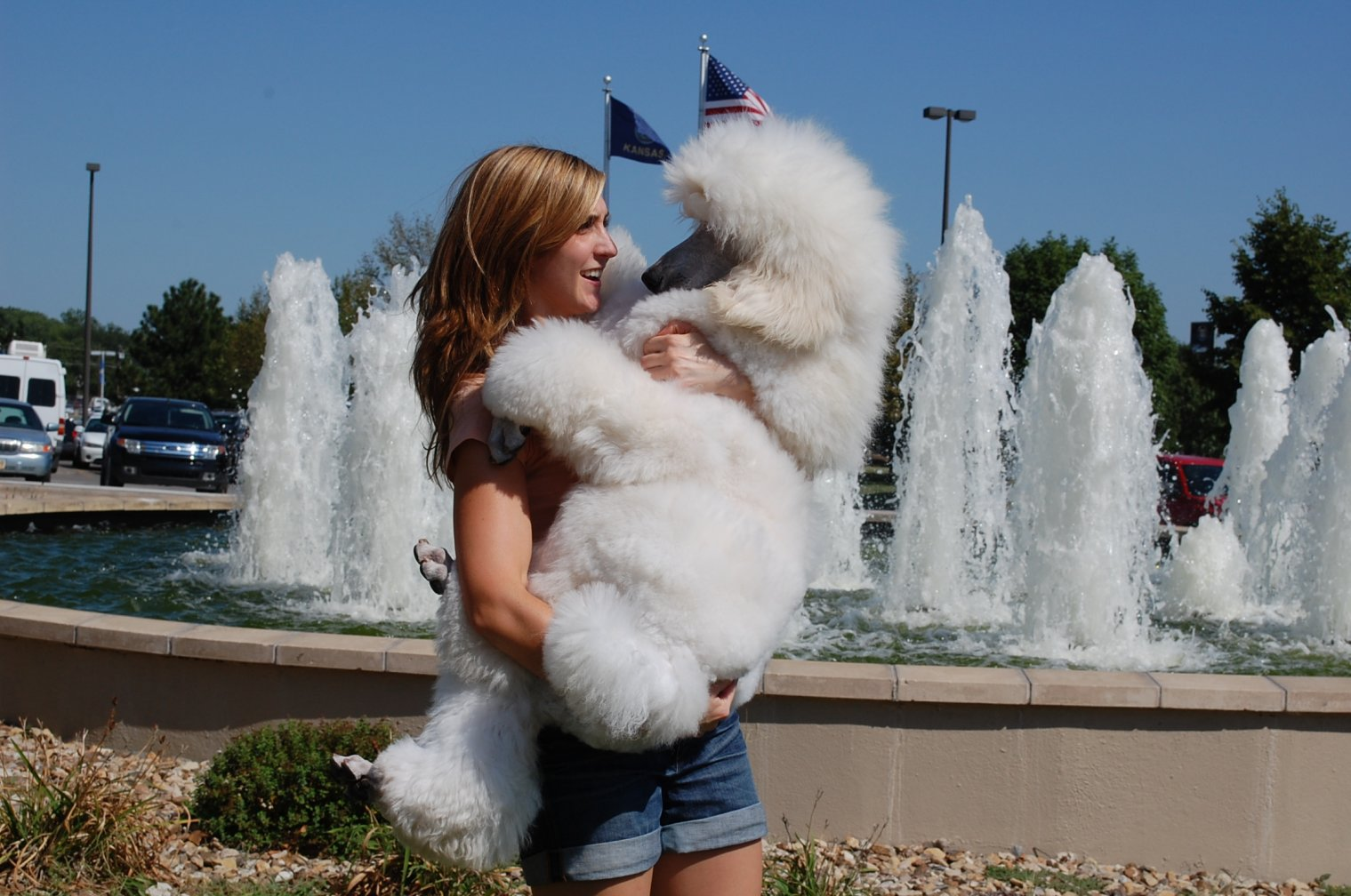 The White Poodle Thread-dsc_0582.jpg