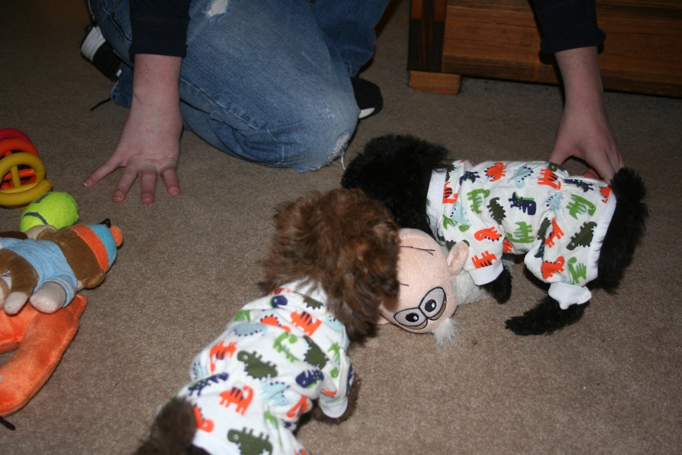 the boys and their dino pajamas-img_3287.jpg