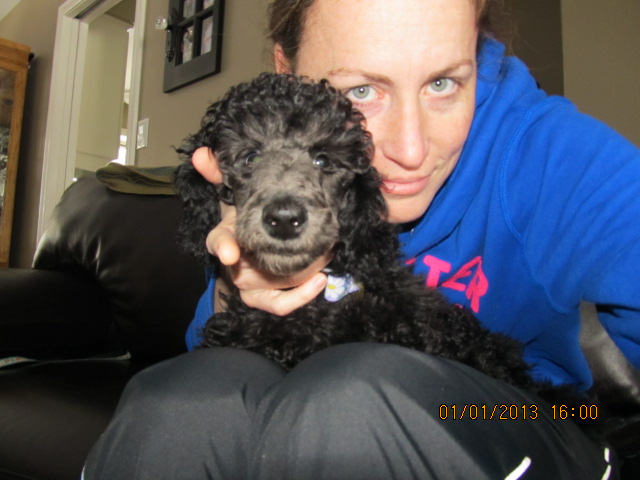 New Puppy and Feeling Concerned...-january-2012-018.jpg