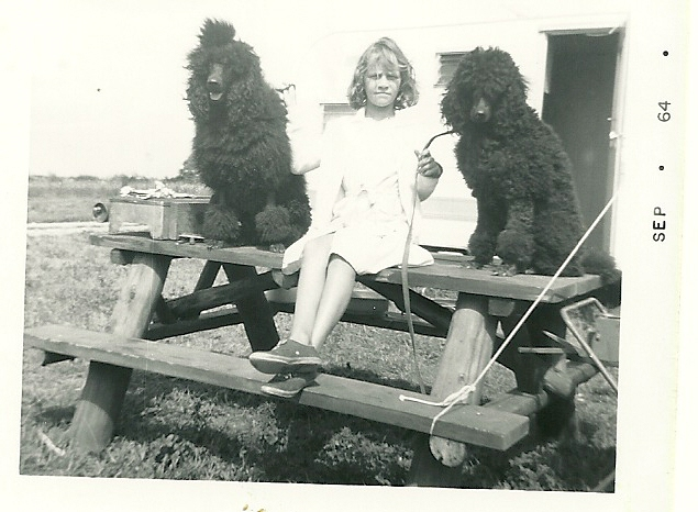Antique hairstyle pictures - Poodle Forum - Standard Poodle, Toy Poodle,