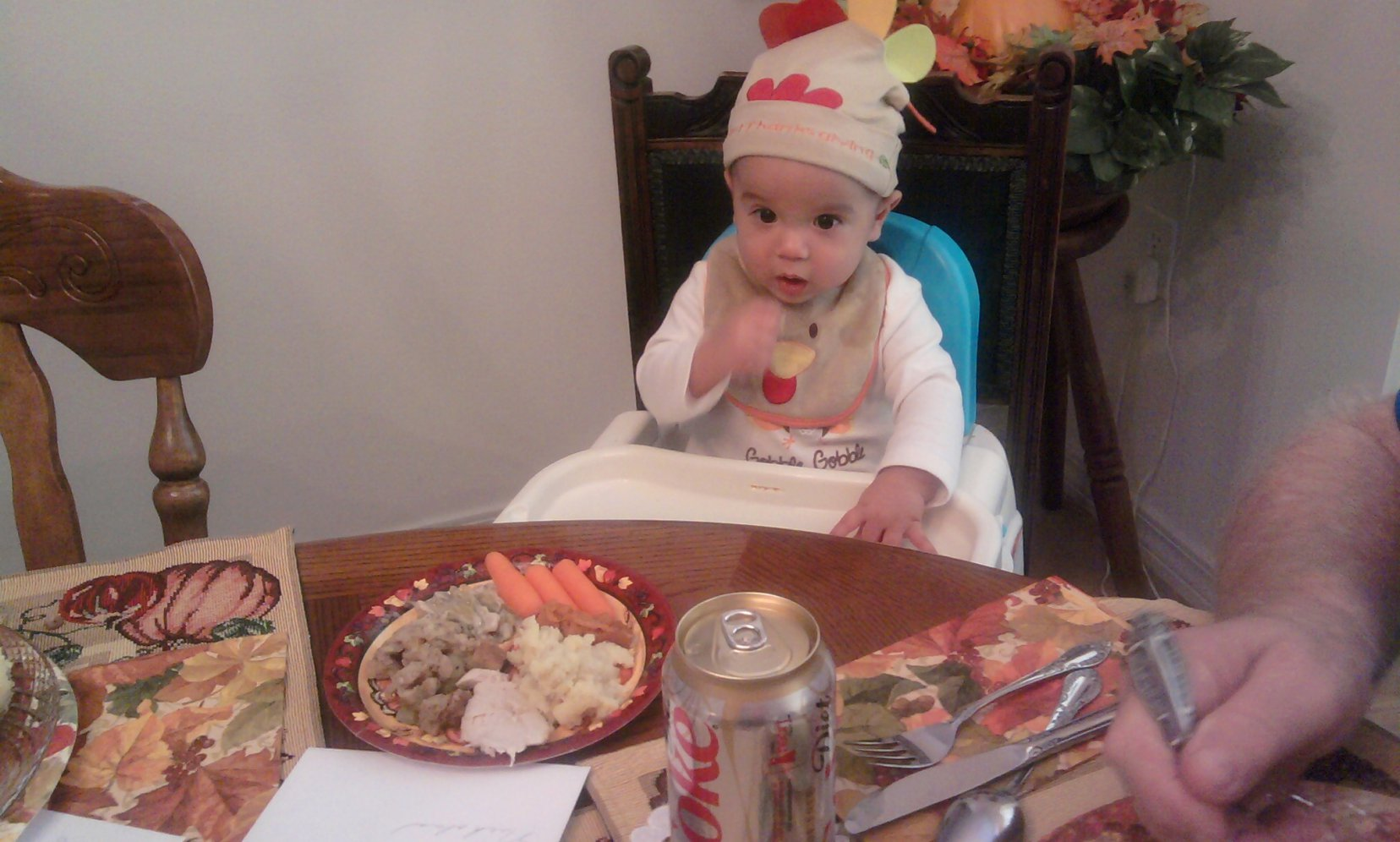 Baby's First Thanksgiving (pics)-photo0275.jpg