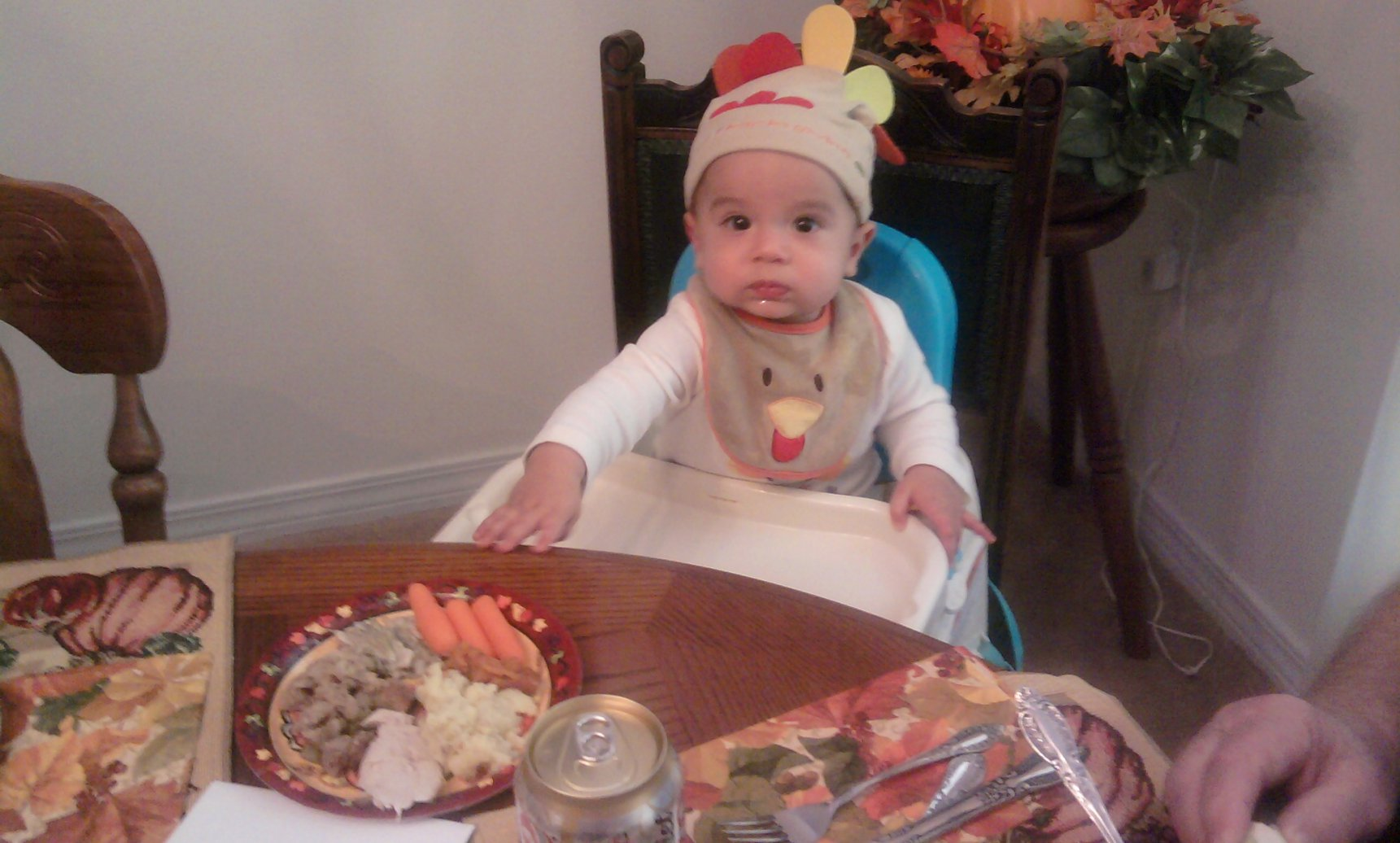 Baby's First Thanksgiving (pics)-photo0276.jpg