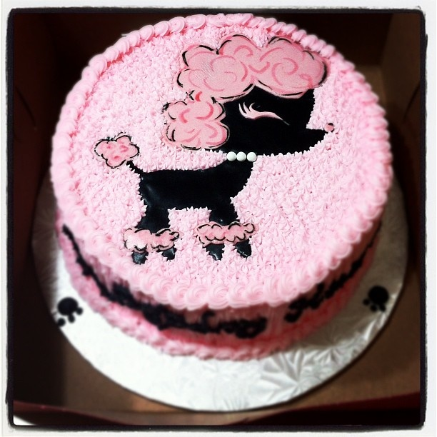 Birthday Cakes For Dogs In Houston Tx ~ Birthday girls poodle forum standard toy