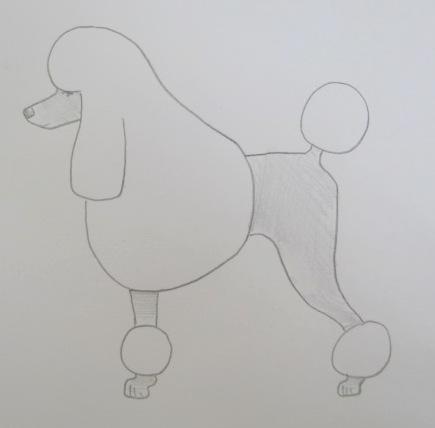 Poodle Clips - Poodle Forum - Standard Poodle, Toy Poodle, Miniature Poodle