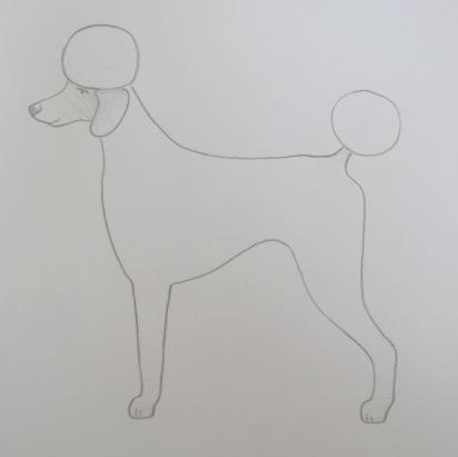 Poodle Clips-poodle-clips-19-naked-kennel-clip.jpg