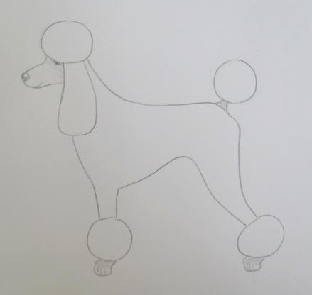 Poodle Clips-poodle-clips-20-miami.jpg