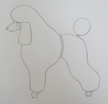 Poodle Clips-poodle-clips-26-desi.jpg