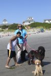 09_08_22_surry&beach_7399-Edit.jpg
