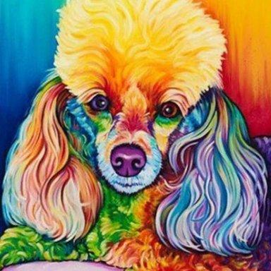 Feedback On Marymargaret Sparkke Light N Lively Poodle